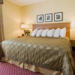 Embassy Suites King room